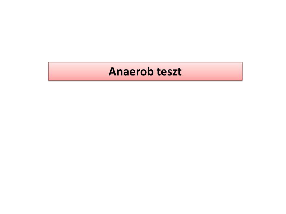 Anaerob teszt