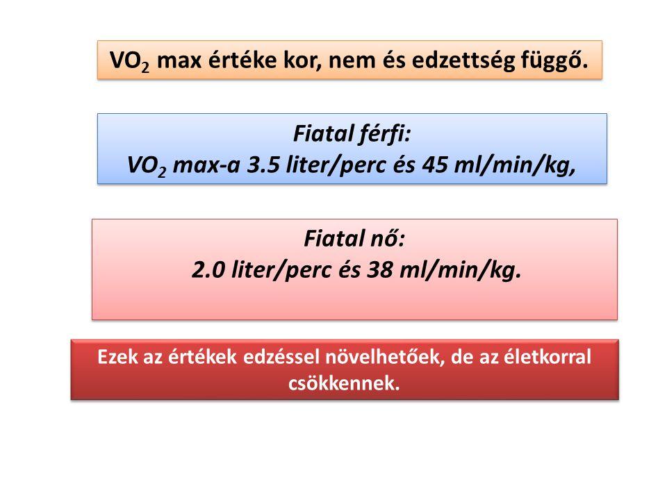 VO2 max értéke kor, nem és edzettség függő.