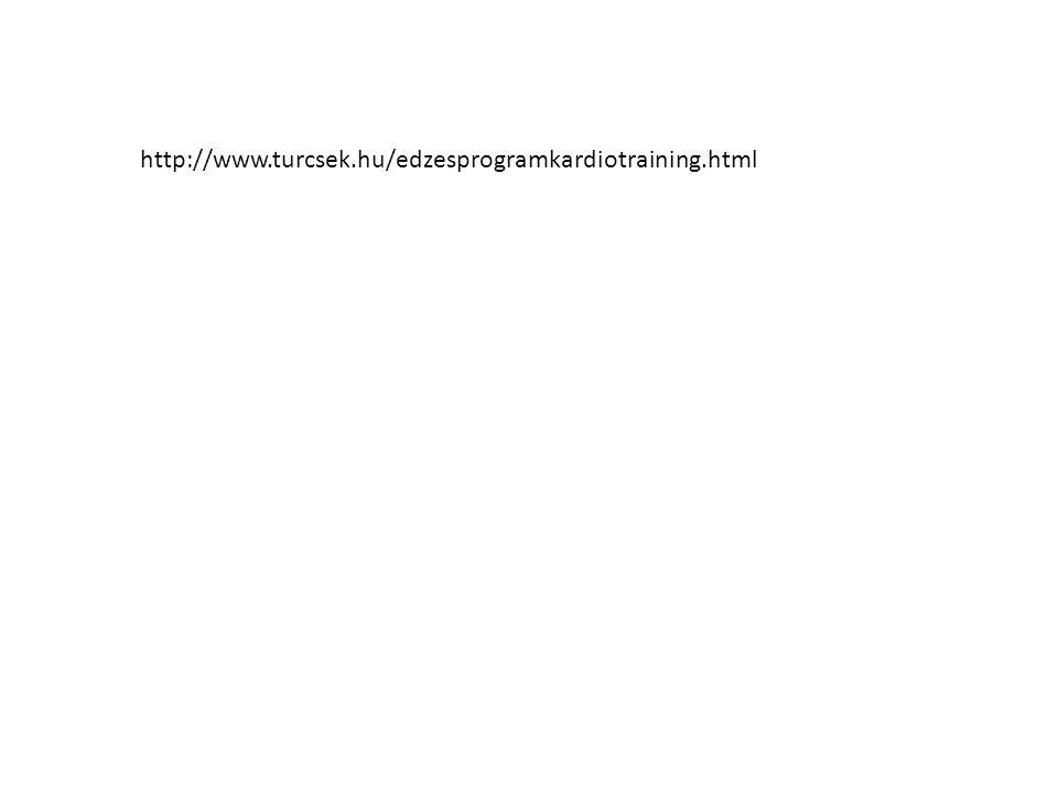 http://www.turcsek.hu/edzesprogramkardiotraining.html