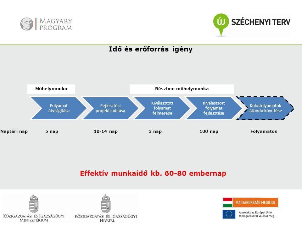 Effektív munkaidő kb. 60-80 embernap