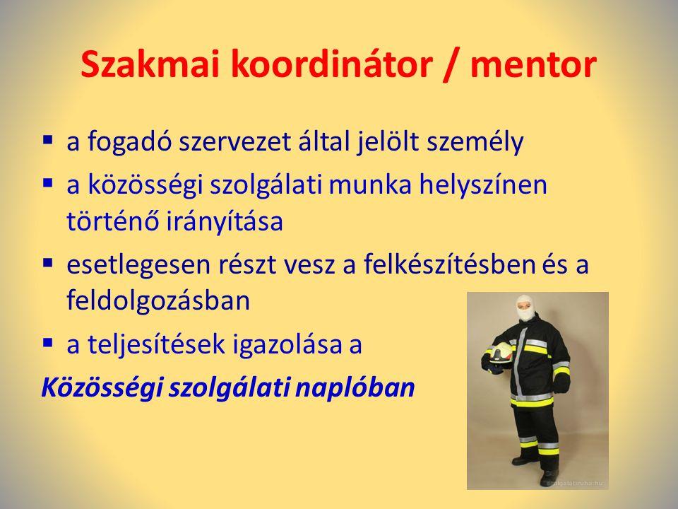 Szakmai koordinátor / mentor