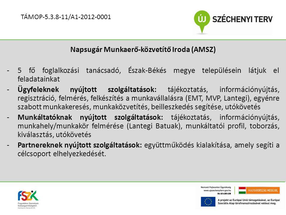 Napsugár Munkaerő-közvetítő Iroda (AMSZ)