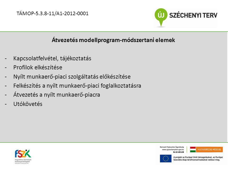 Átvezetés modellprogram-módszertani elemek