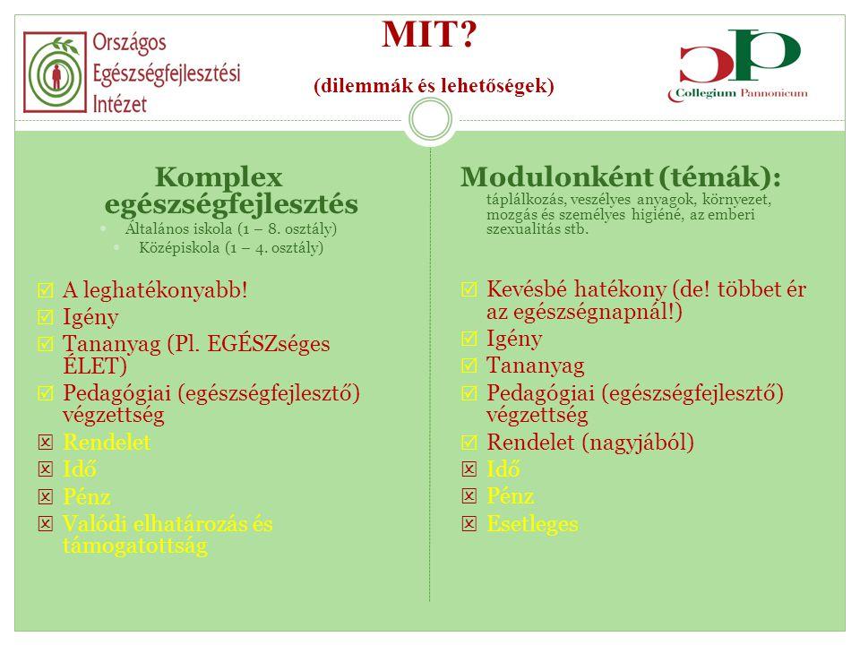 MIT (dilemmák és lehetőségek)