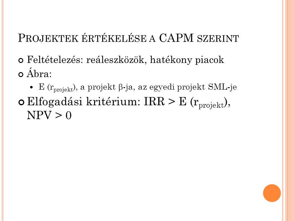 Projektek értékelése a CAPM szerint