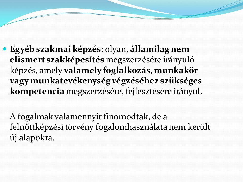 Egyéb szakmai képzés: olyan, államilag nem elismert szakképesítés megszerzésére irányuló képzés, amely valamely foglalkozás, munkakör vagy munkatevékenység végzéséhez szükséges kompetencia megszerzésére, fejlesztésére irányul.
