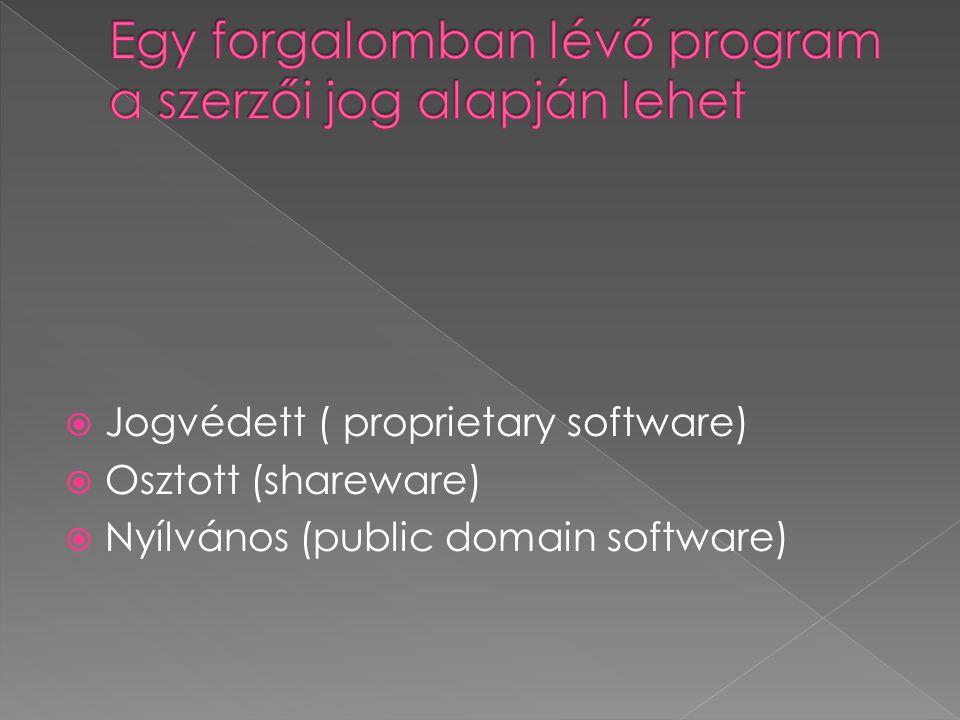 Egy forgalomban lévő program a szerzői jog alapján lehet