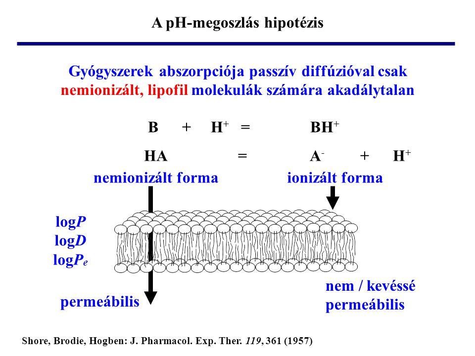 A pH-megoszlás hipotézis