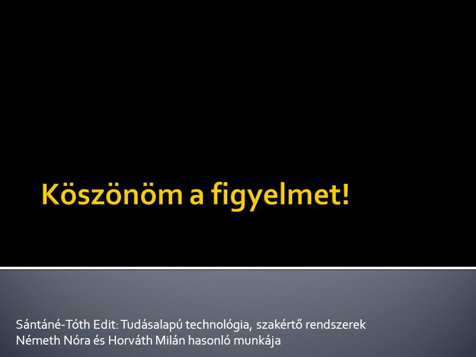 Köszönöm a figyelmet. Sántáné-Tóth Edit: Tudásalapú technológia, szakértő rendszerek.