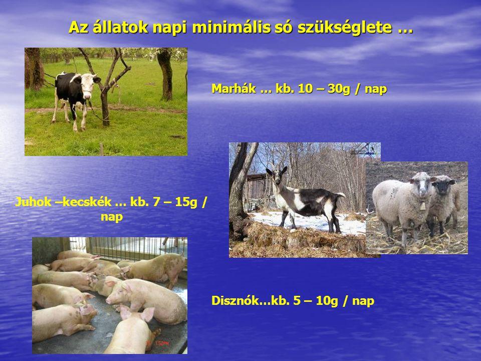 Az állatok napi minimális só szükséglete …
