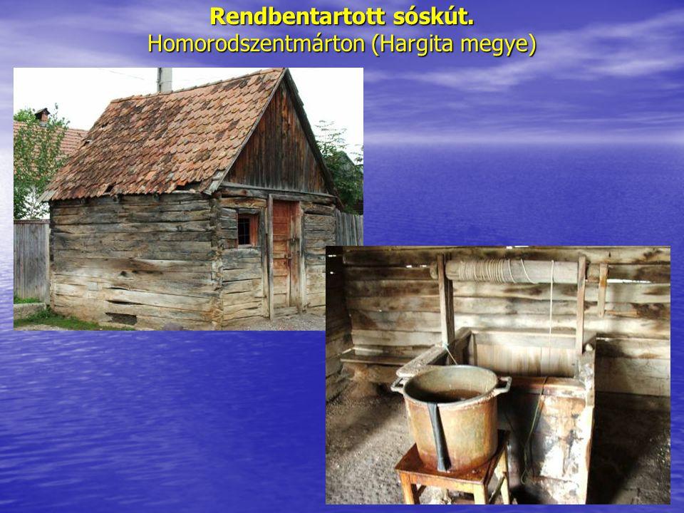 Rendbentartott sóskút. Homorodszentmárton (Hargita megye)