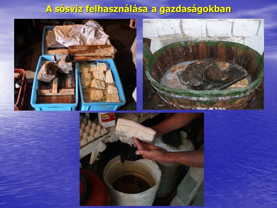 A sósviz felhasználása a gazdaságokban