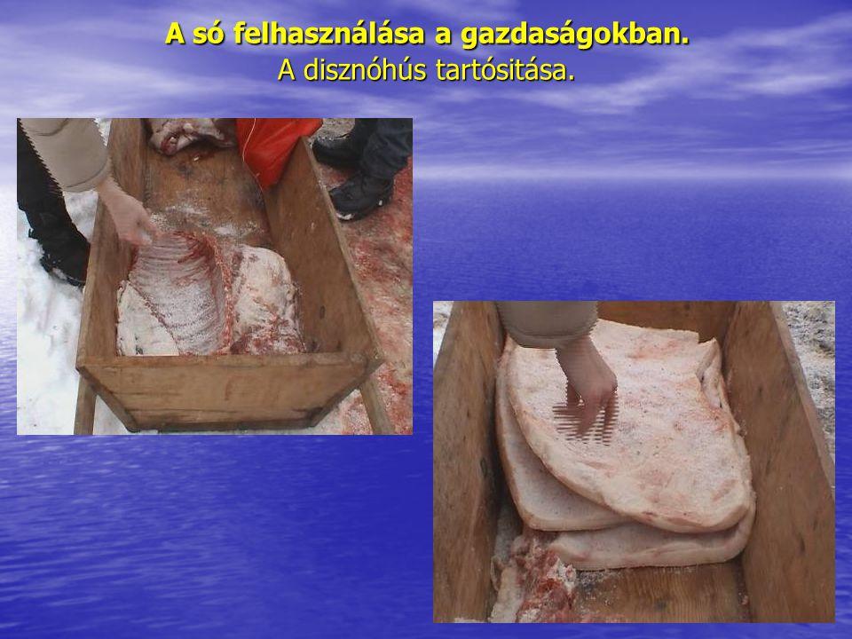 A só felhasználása a gazdaságokban. A disznóhús tartósitása.