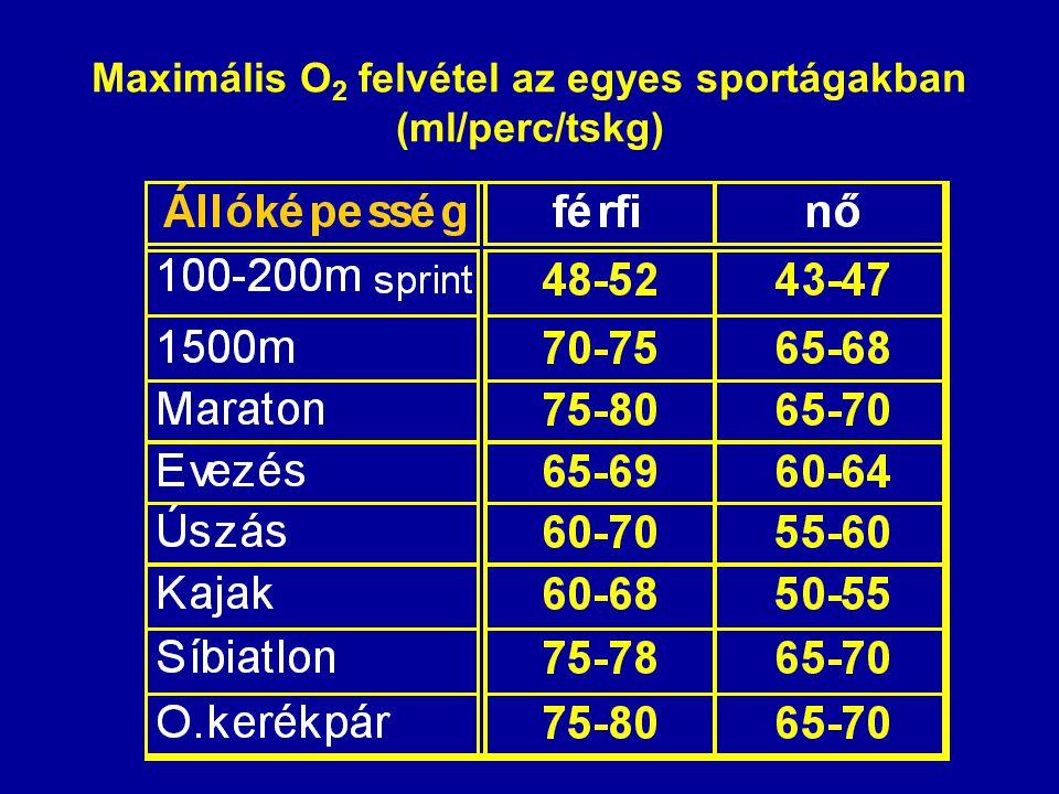 Maximális O2 felvétel az egyes sportágakban (ml/perc/tskg)