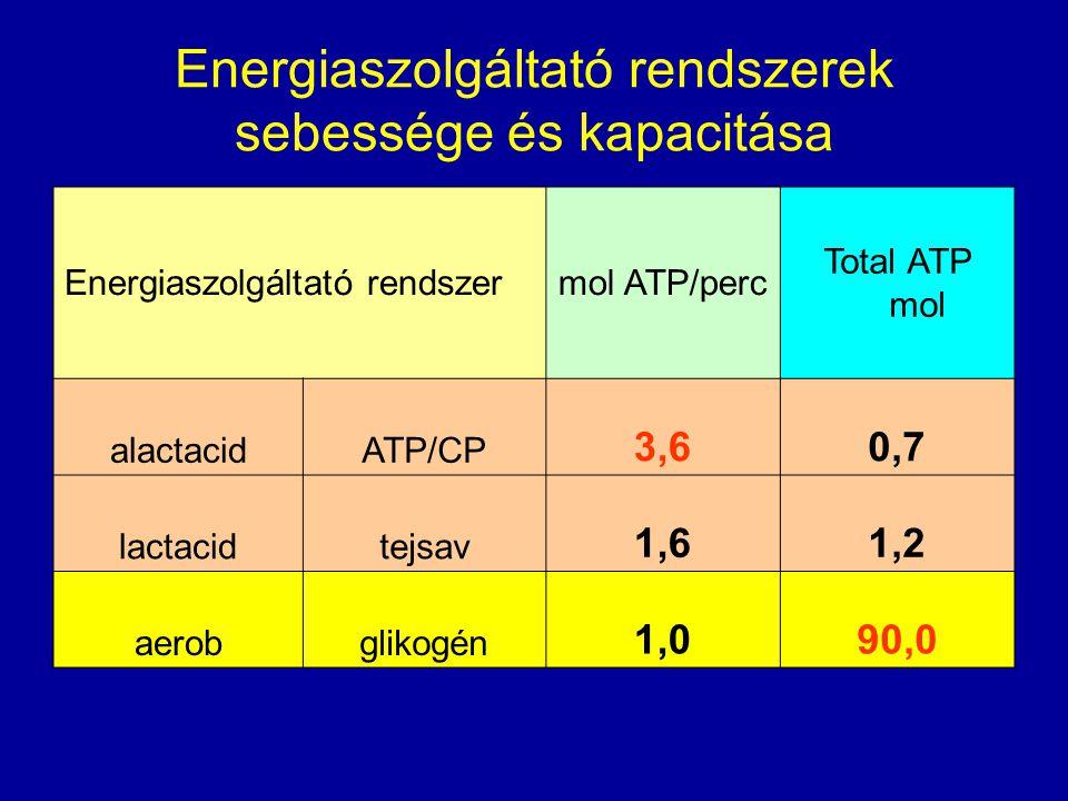 Energiaszolgáltató rendszerek sebessége és kapacitása
