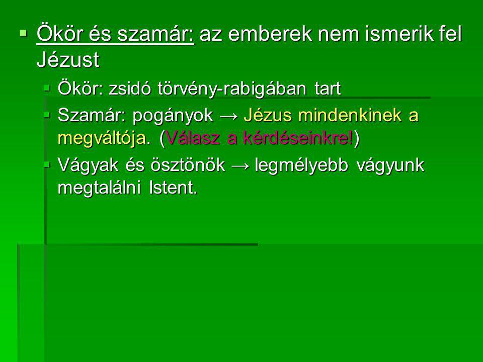 Ökör és szamár: az emberek nem ismerik fel Jézust