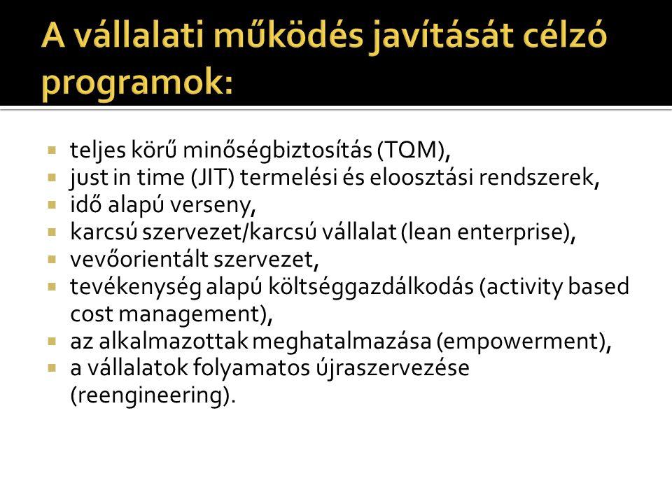 A vállalati működés javítását célzó programok:
