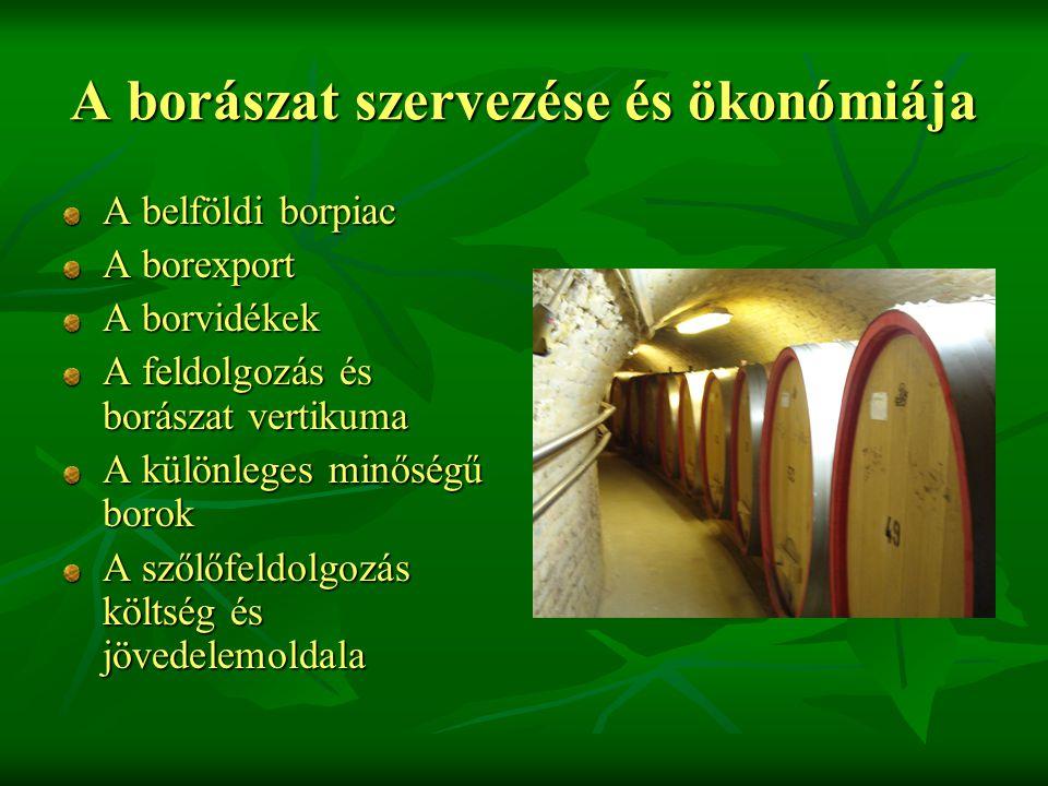 A borászat szervezése és ökonómiája