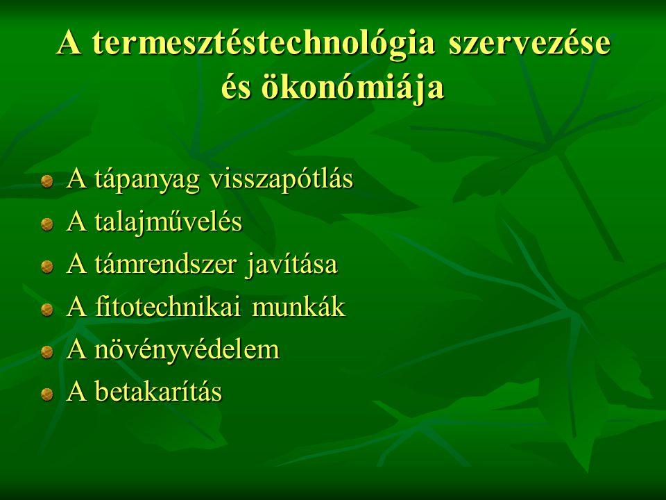 A termesztéstechnológia szervezése és ökonómiája