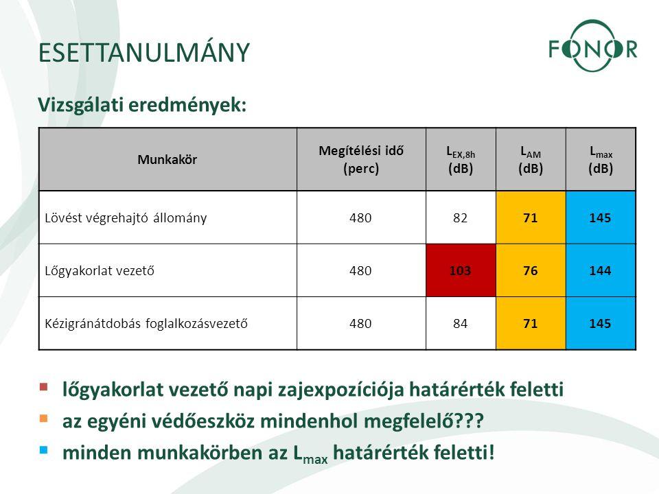 ESETTANULMÁNY Vizsgálati eredmények: