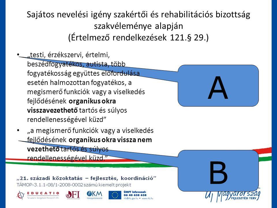 Sajátos nevelési igény szakértői és rehabilitációs bizottság szakvéleménye alapján (Értelmező rendelkezések 121.§ 29.)