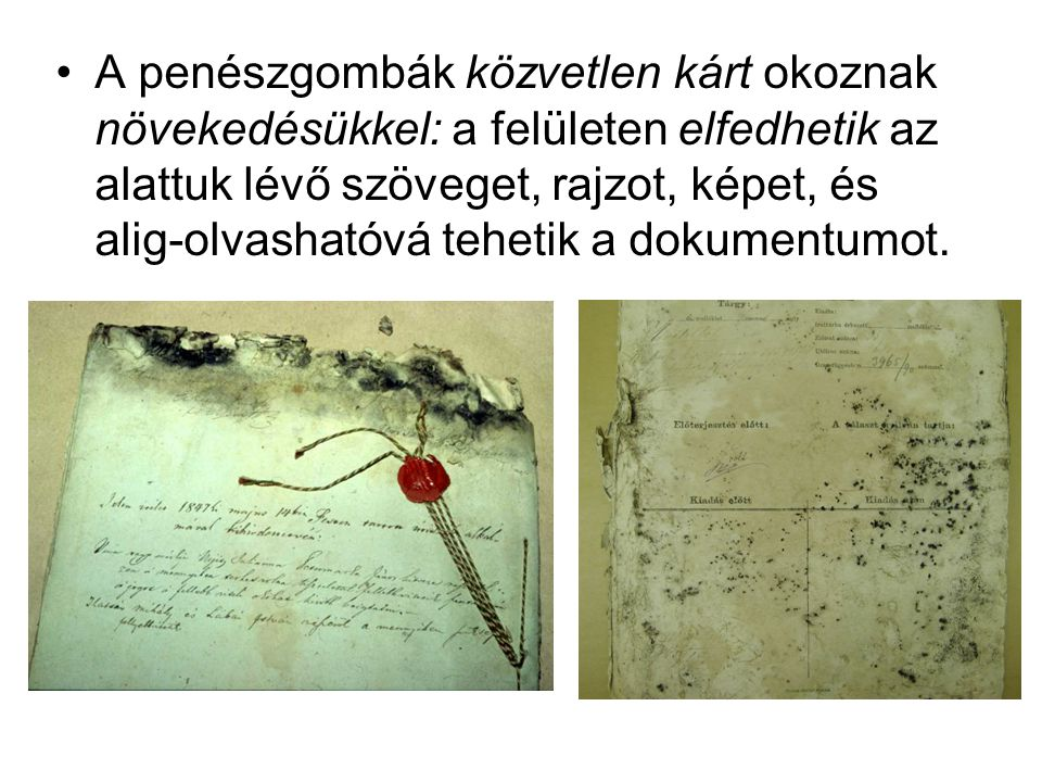 A penészgombák közvetlen kárt okoznak növekedésükkel: a felületen elfedhetik az alattuk lévő szöveget, rajzot, képet, és alig-olvashatóvá tehetik a dokumentumot.
