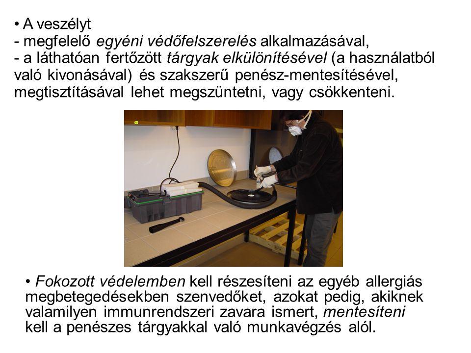 A veszélyt - megfelelő egyéni védőfelszerelés alkalmazásával, - a láthatóan fertőzött tárgyak elkülönítésével (a használatból való kivonásával) és szakszerű penész-mentesítésével, megtisztításával lehet megszüntetni, vagy csökkenteni.