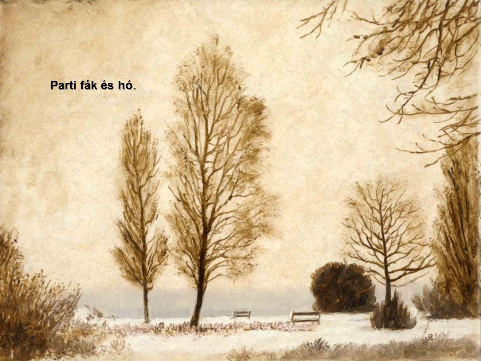 Parti fák és hó.