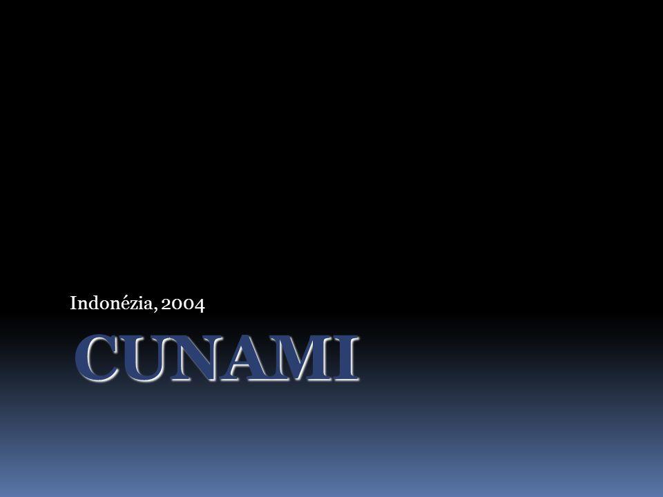 Indonézia, 2004 CUNAMI