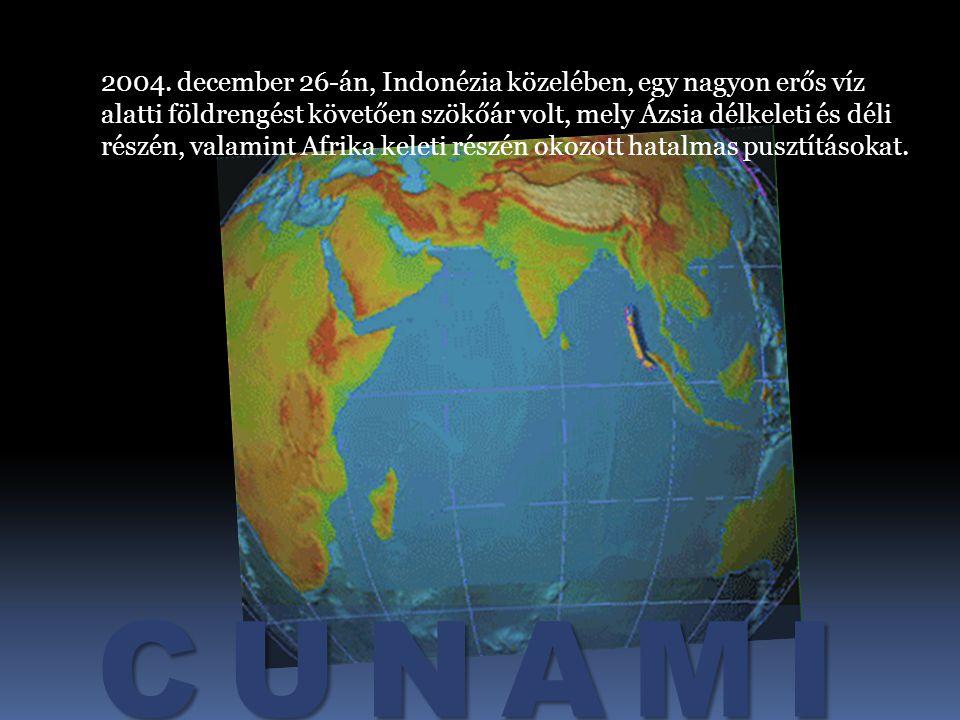 2004. december 26-án, Indonézia közelében, egy nagyon erős víz alatti földrengést követően szökőár volt, mely Ázsia délkeleti és déli részén, valamint Afrika keleti részén okozott hatalmas pusztításokat.