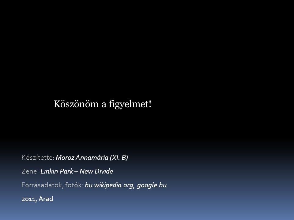 Köszönöm a figyelmet! Készítette: Moroz Annamária (XI. B)