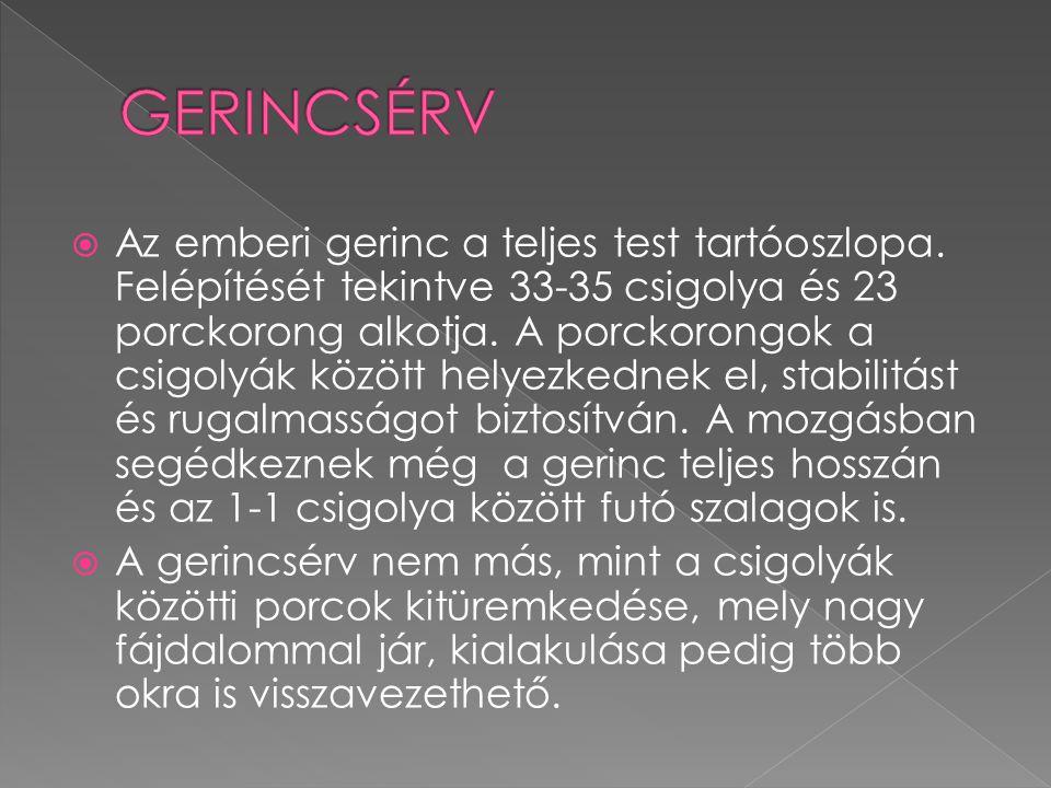 GERINCSÉRV