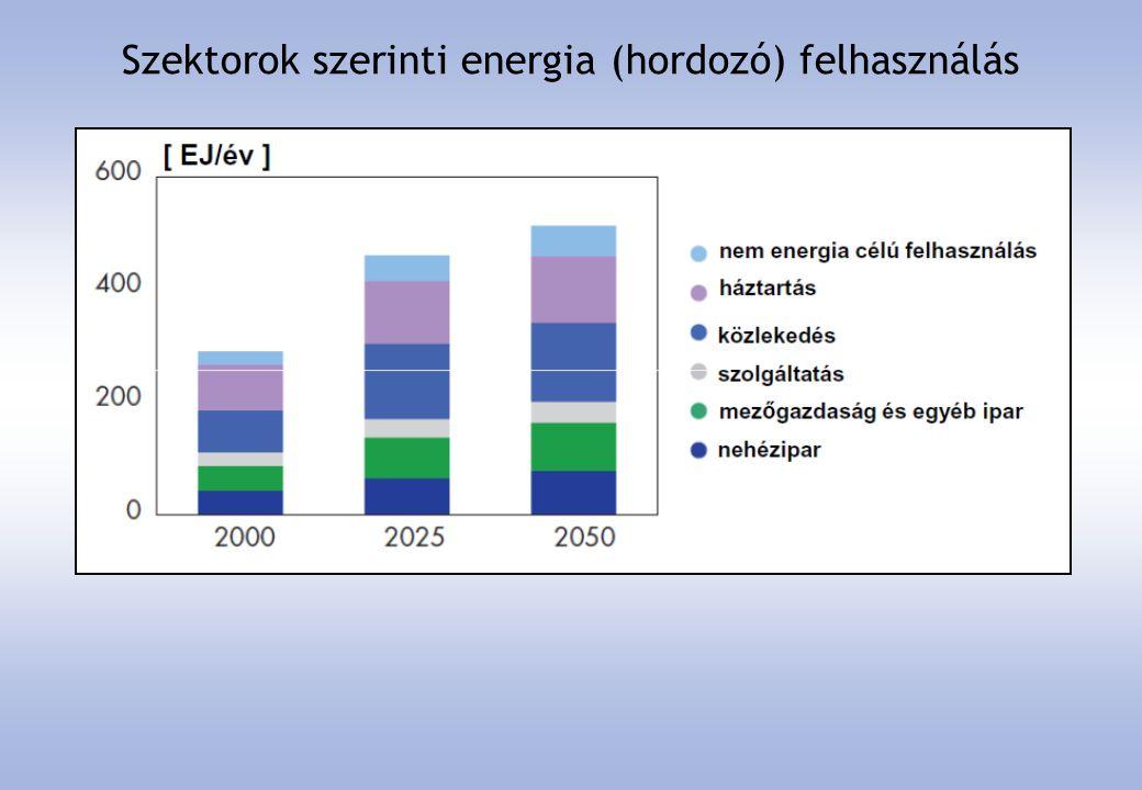 Szektorok szerinti energia (hordozó) felhasználás