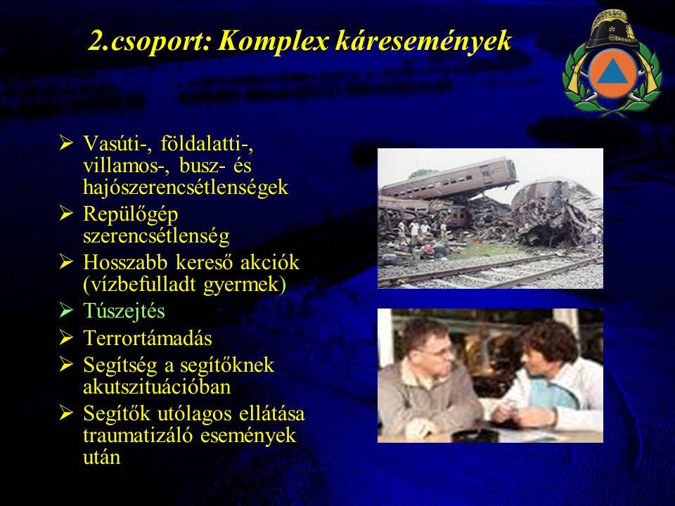 2.csoport: Komplex káresemények