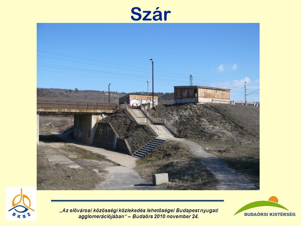 """Szár """"Az elővárosi közösségi közlekedés lehetőségei Budapest nyugati agglomerációjában – Budaörs 2010 november 24."""