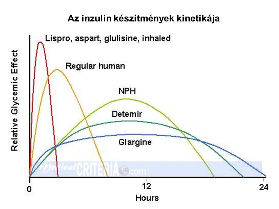 Az inzulin készítmények kinetikája