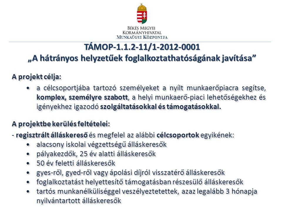 """Munkaügyi Központja TÁMOP-1.1.2-11/1-2012-0001 """"A hátrányos helyzetűek foglalkoztathatóságának javítása"""