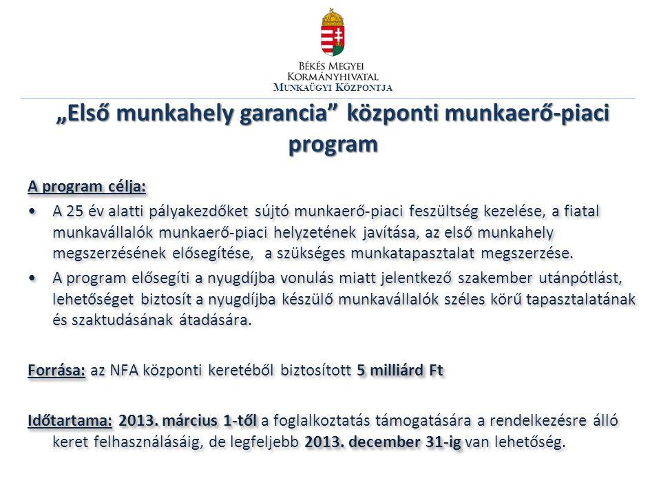 """""""Első munkahely garancia központi munkaerő-piaci program"""