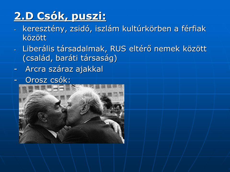 2.D Csók, puszi: keresztény, zsidó, iszlám kultúrkörben a férfiak között. Liberális társadalmak, RUS eltérő nemek között (család, baráti társaság)