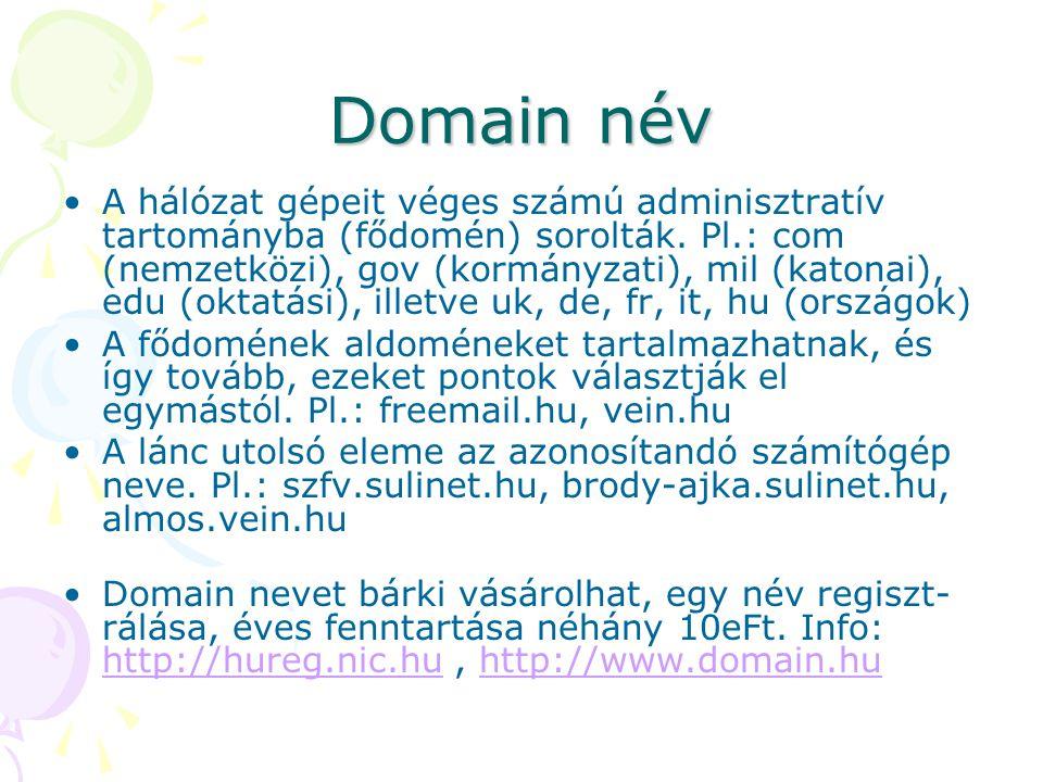 Domain név