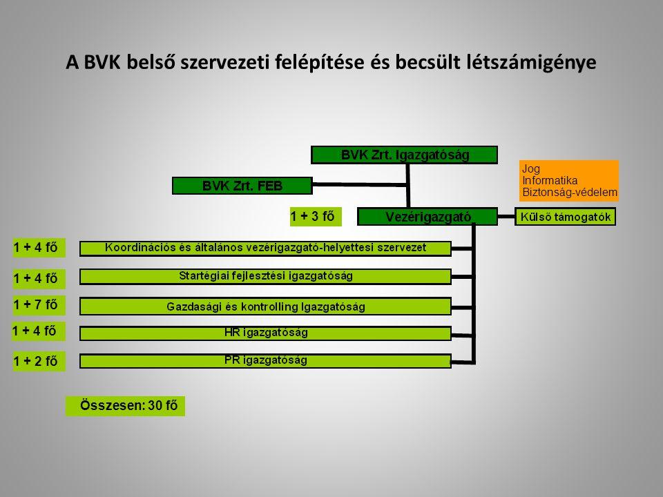 A BVK belső szervezeti felépítése és becsült létszámigénye
