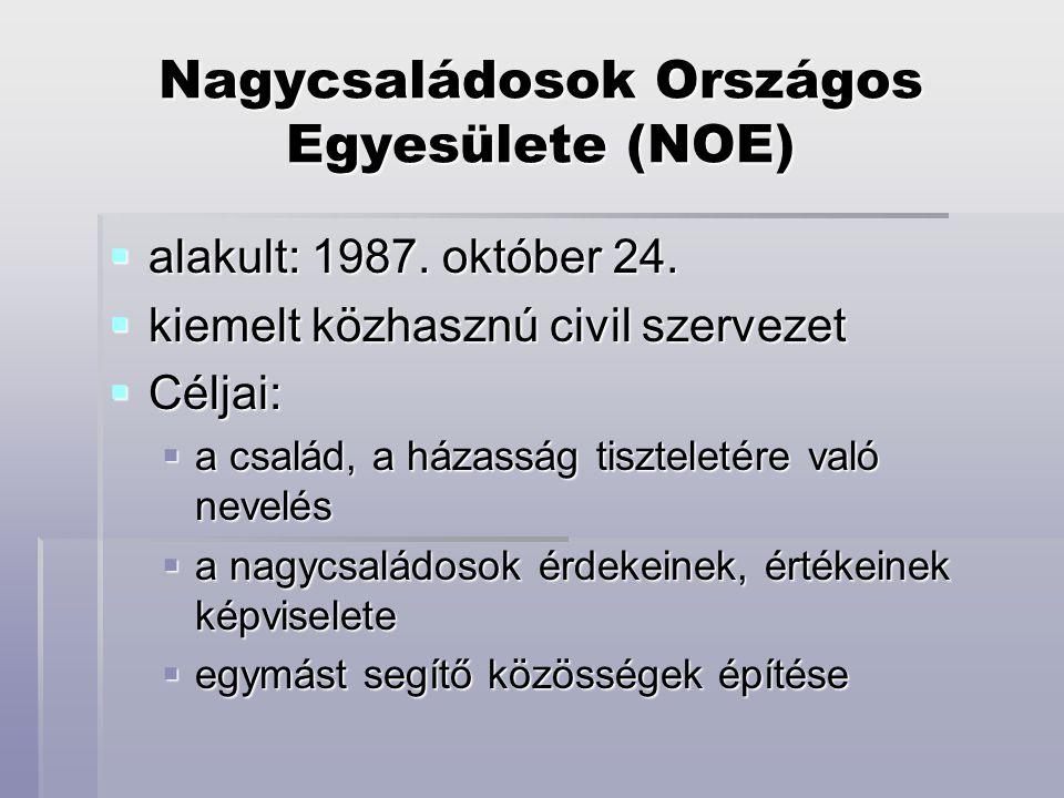 Nagycsaládosok Országos Egyesülete (NOE)