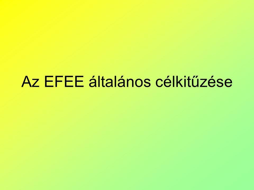 Az EFEE általános célkitűzése