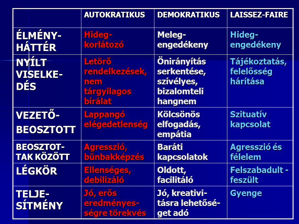 ÉLMÉNY-HÁTTÉR NYÍLT VISELKE-DÉS VEZETŐ- BEOSZTOTT LÉGKÖR TELJE-SÍTMÉNY