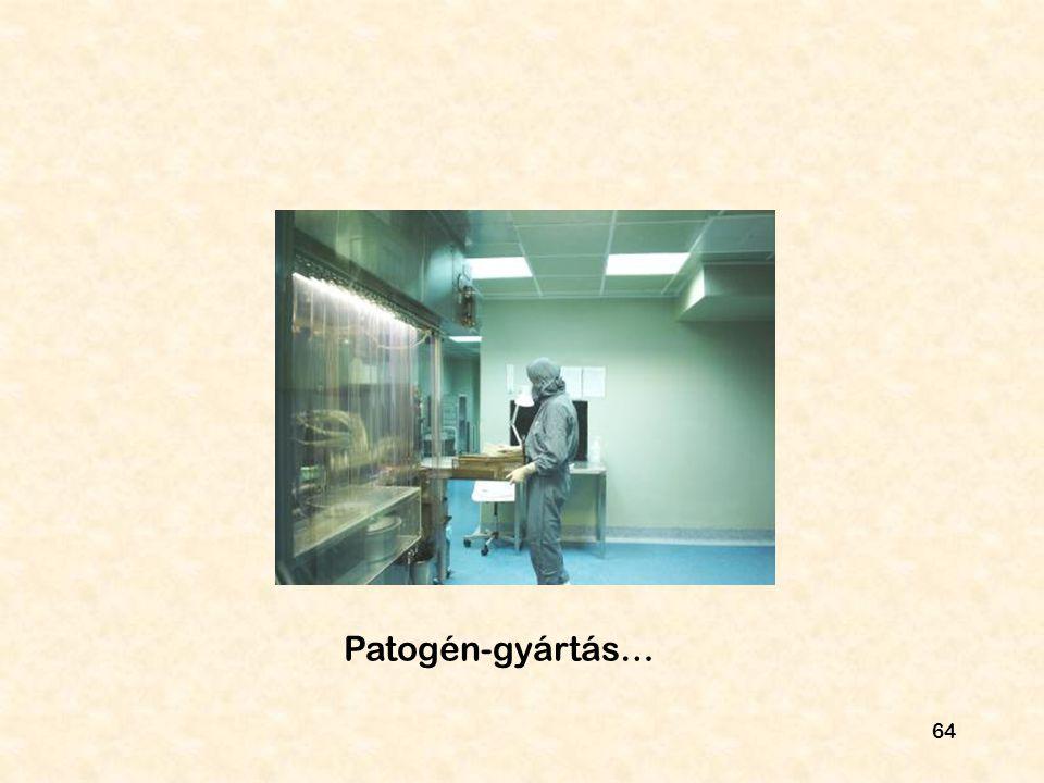 Patogén-gyártás…
