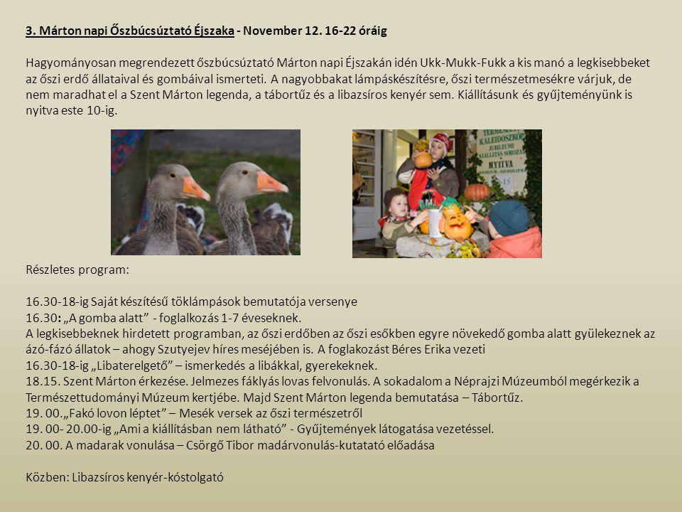 3. Márton napi Őszbúcsúztató Éjszaka - November 12. 16-22 óráig
