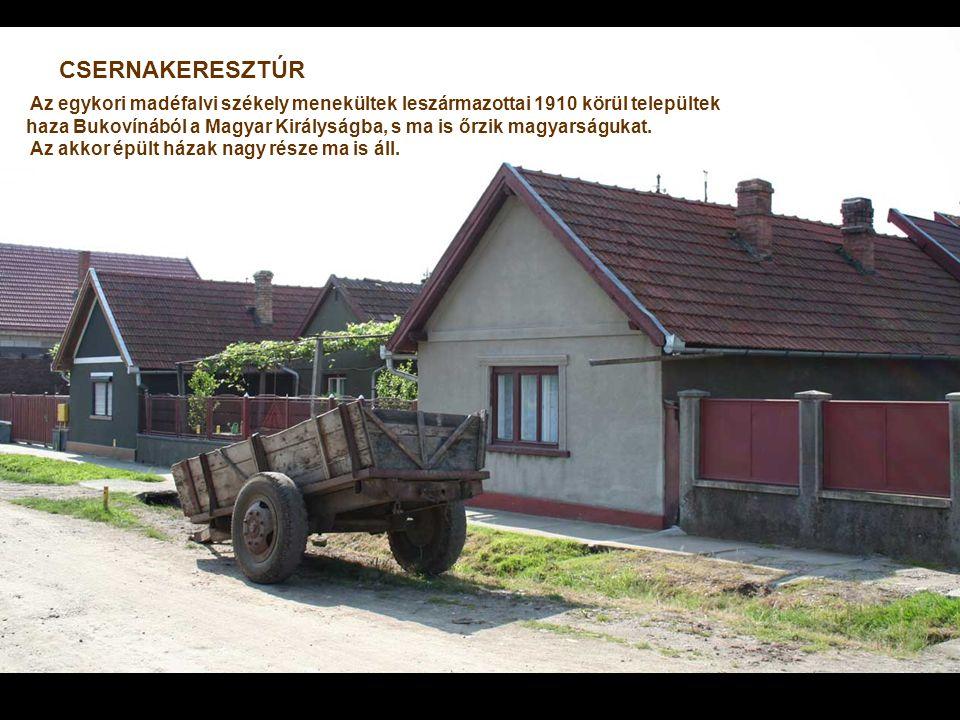 CSERNAKERESZTÚR Az egykori madéfalvi székely menekültek leszármazottai 1910 körül települtek.