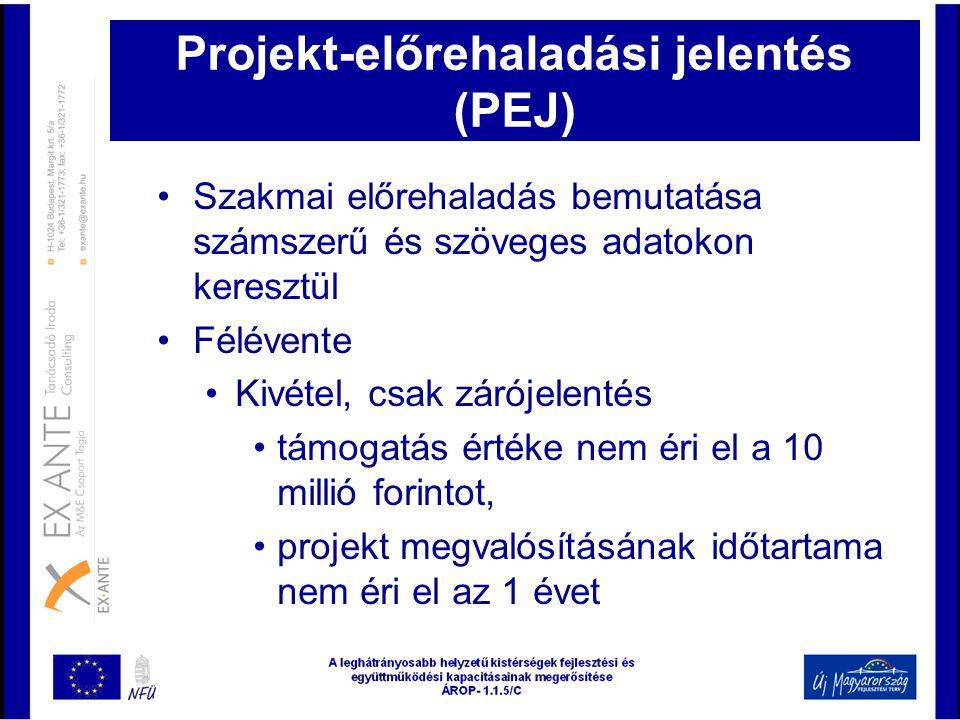 Projekt-előrehaladási jelentés (PEJ)