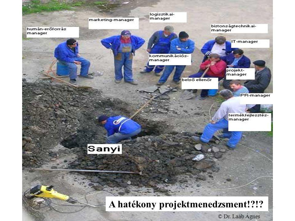 Projektmenedzsment A hatékony projektmenedzsment! ! © Dr. Laáb Ágnes