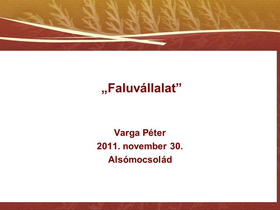 Varga Péter 2011. november 30. Alsómocsolád